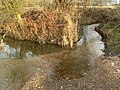 Haseley Brook meets River Thame - geograph.org.uk - 95990.jpg