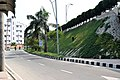 Hatirjheel road.jpg