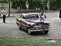 Havana Forrest Cuba - panoramio - LuisMoro (10).jpg