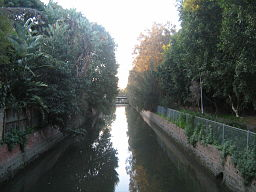 Hawthorne Canal looking downstream at Haberfield NSW.JPG