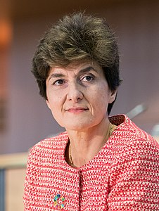 Hearing of Sylvie Goulard (France) , candidate commissioner for internal market (48832160786) (cropped).jpg