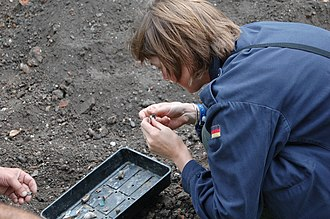 Helen Geake - Helen looking at small finds during a Time Team excavation in Lincoln's Inn Fields