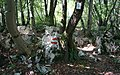 Hiking trail, the Walk of Peace, stage 27 from Tolmin, Slovenia to Castelmonte, Italy,.jpg