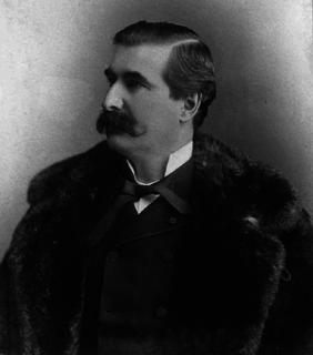 Honoré Mercier Canadian politician (1840-1894)