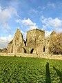 Hore Abbey, Caiseal, Éire - 46585654601.jpg