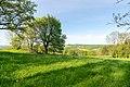 Horn-Bad Meinberg - 2015-05-10 - LSG-4118-0001 (32).jpg