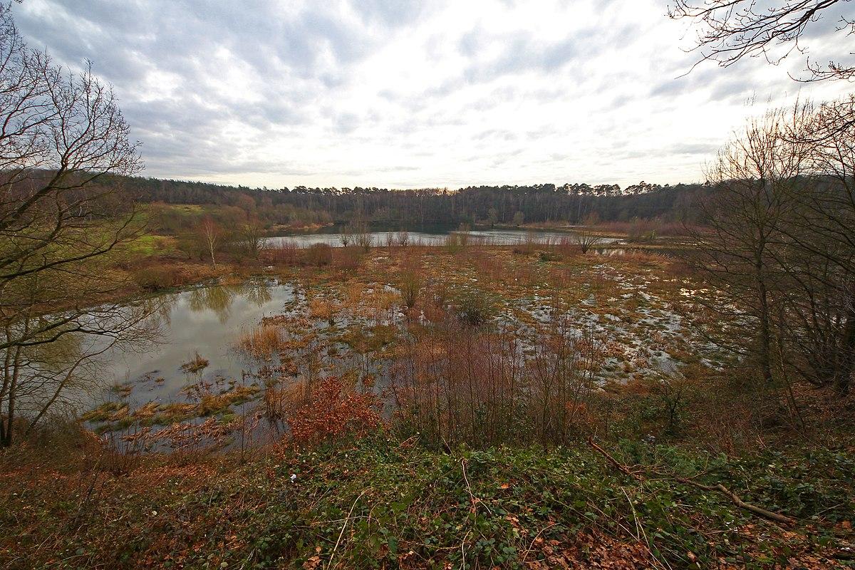 Naturschutzgebiet Am Hornpottweg – Wikipedia