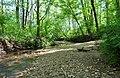 House Creek - panoramio.jpg