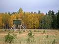 Hunting blind in Estonia.jpg