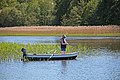 Idyllic fishing for perch and pike - panoramio.jpg