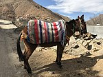 Imlil and its valley and way to Jbel Toubkal 18.jpg
