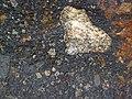Impact breccia (Sandcherry Member, Onaping Formation, Paleoproterozoic, 1.85 Ga; High Falls roadcut, Sudbury Impact Structure, Ontario, Canada) 20 (47759713711).jpg