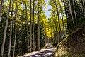 Inner Basin Trail No. 29 (30074975761).jpg