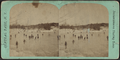 Instantaneous skating scene, from Robert N. Dennis collection of stereoscopic views.png
