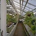 Interieur, overzicht plantenkas - Delft - 20404920 - RCE.jpg