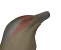 Itemirus Bust.png