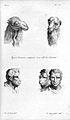 J.C. Lavater, L'Art de connaitre les hommes... Wellcome L0025298.jpg