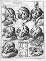 J. Scultetus, Armanmentarium chirurgicum... Wellcome L0024812.jpg
