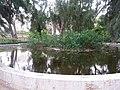 Jardín de Monforte 100.jpg