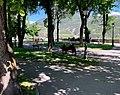 Jardin de l'Archevéché (Embrun) - mai 2021 (2).jpg