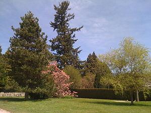 Arpajon-sur-Cère - Gardens at the Chateau of Carbonat