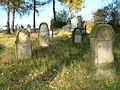 Jewish cemetery in Bobowa5.jpg