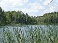 Jezioro 2 - panoramio.jpg