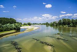 Jiu River in Craiova.jpg