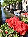 Jordaan, Amsterdam, Netherlands - panoramio (1).jpg