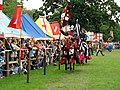 Jousting at Warwick Castle - geograph.org.uk - 562425.jpg