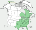 Justicia americana NA-dist-map.png