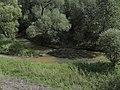 Křivoklát - panoramio (7).jpg