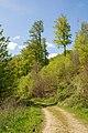 Kalletal - 2016-05-05 - LSG-3819-0054 (041).jpg
