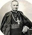 Kardinál Kašpar (cropped).jpg