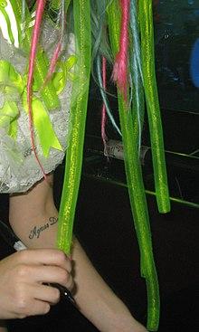 Kerli   Wikipedia  quot Agnus Dei quot  Tattooed on Kerli     s arm