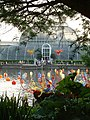 Kew Gardens, Dale Chihuly Exhibition - geograph.org.uk - 16299.jpg
