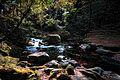 Kikuchi Valley, Kumamoto – Japan (5538351584).jpg
