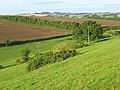 Kingrove Bottom - geograph.org.uk - 545481.jpg