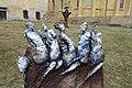 Kladruby klášter sochy 1.jpg