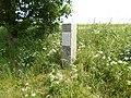 Klingenberg. LSG Tal der Wilden Weißeritz 014.jpg