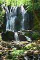 Koleshinski vodopad 28.JPG