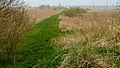 Kollumeroord - rietveld.jpg