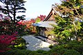 Konpuku-ji, Garden -2 (November 2014) - panoramio.jpg