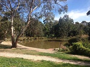 Koonung Creek Reserve - Wetlands located in Koonung Creek Reserve.