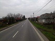 Krčava road.jpg