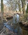 Krummbach (Cunnersdorfer Wasser).jpg