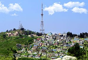 Kurseong - Panorama of Kurseong