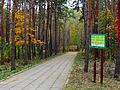 Kyiv Sovky Park19.JPG