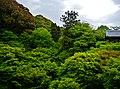 Kyoto Tofuku-ji Garten 2.jpg