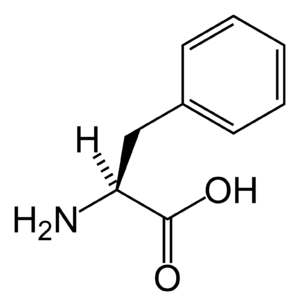 Phenylalanine (data page) - Skeletal structure of L-phenylalanine